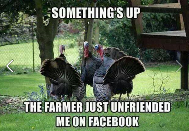 Something's Up -- The Farmer Just Unfriended Me on Facebook