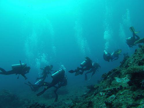 Broadreach Fiji Underwater Swim