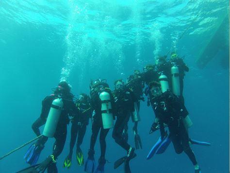 Broadreach Fiji Diving Day 7