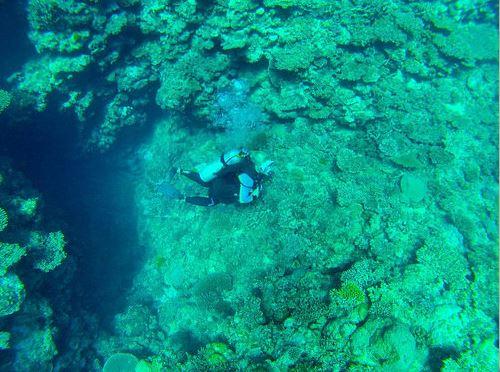 Broadreach Fiji Coral Cave